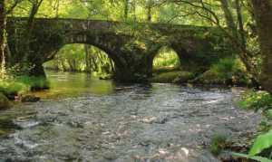 puentes-trazan-6